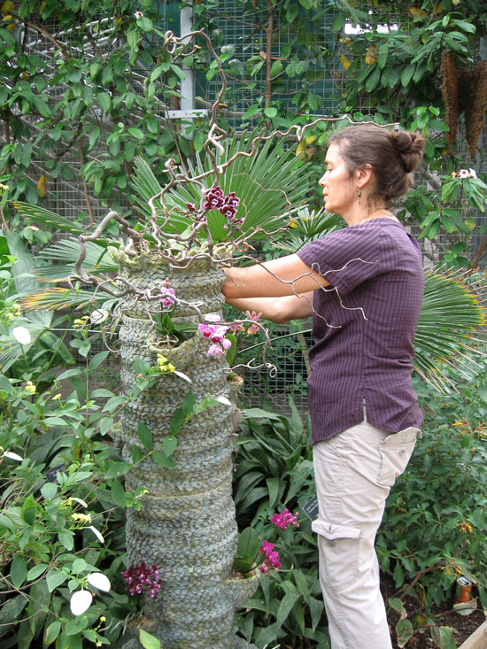 Sharon Planting Orchids In Tree
